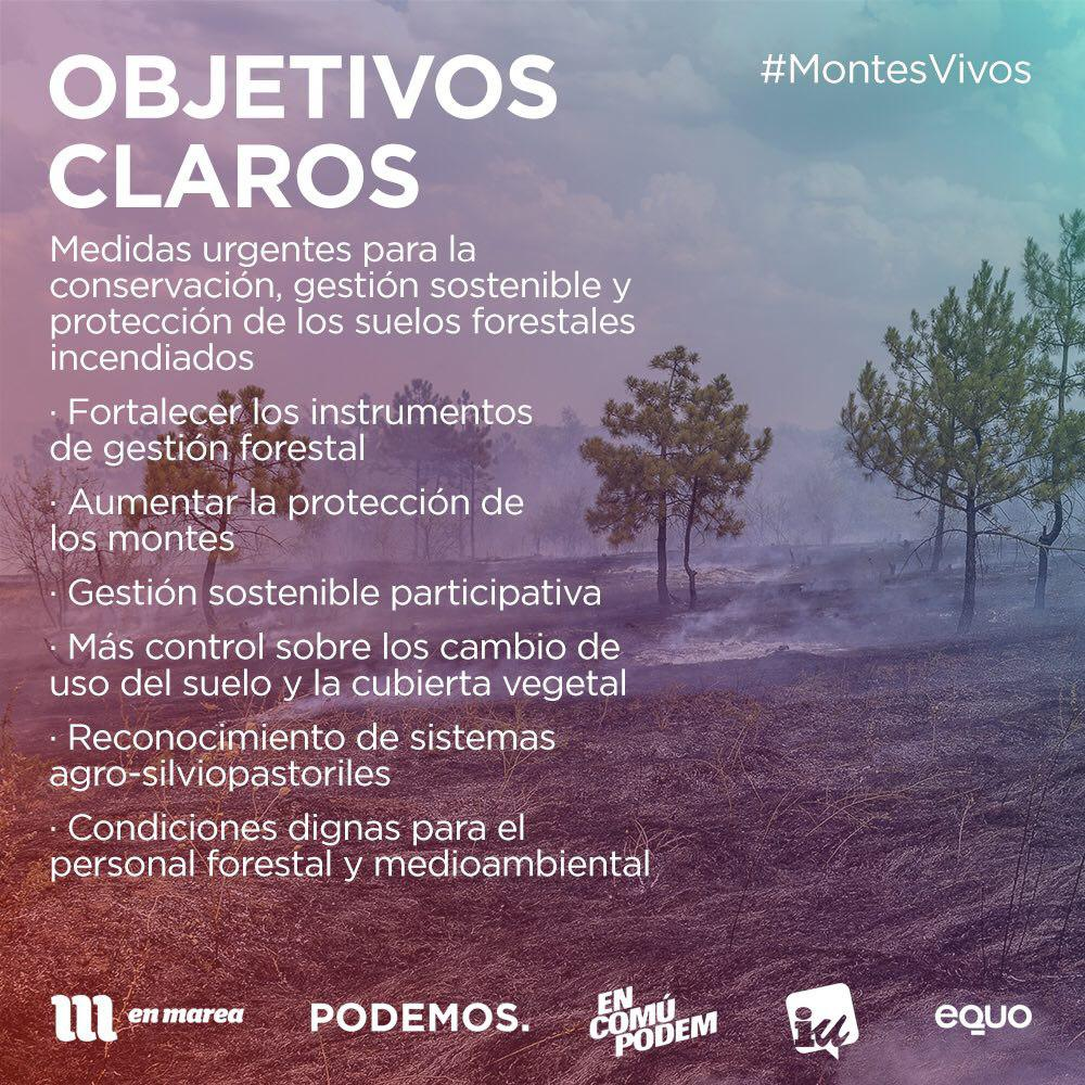 Montes-Vivos-Objetivos-Claros